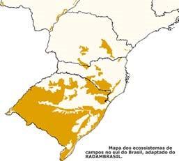 extensão dos campos sulinos - biomas brasileiros