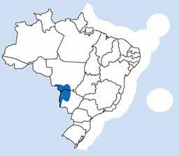 biomas brasileiros - Pantanal