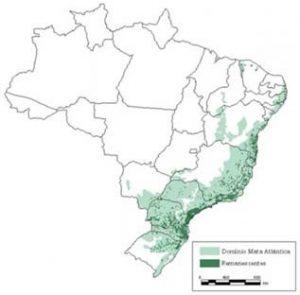 extensão da mata atlântica no território brasileiro - biomas