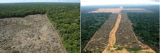 impacto ambiental - Amazônia