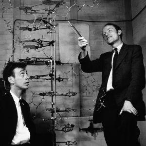 DNA e RNA - Watson e Crick
