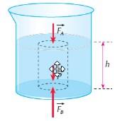 empuxo - pressão em líquidos
