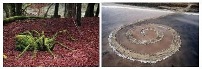 Land Art - ecologia