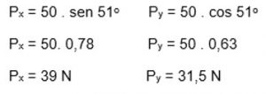 Px = 39N e Py = 31,5N