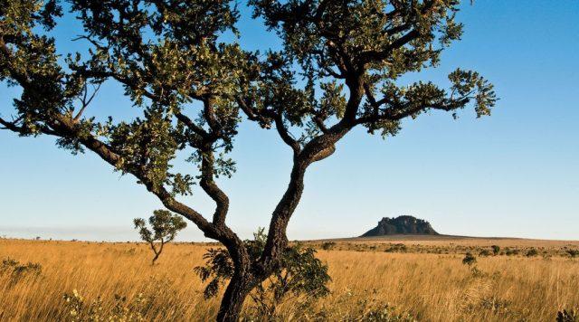 exemplo de paisagem natural