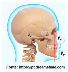 movimento da mandíbula