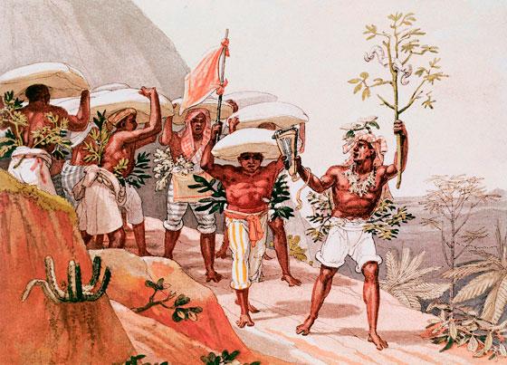 História dos negros no Brasil