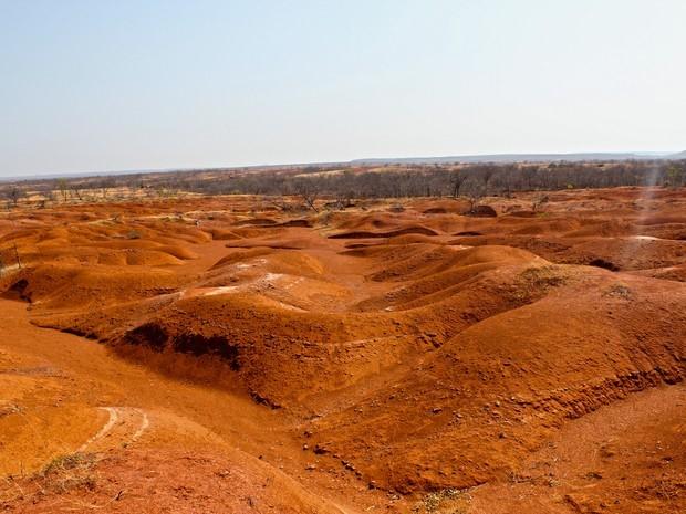 processo de desertificação no piaui