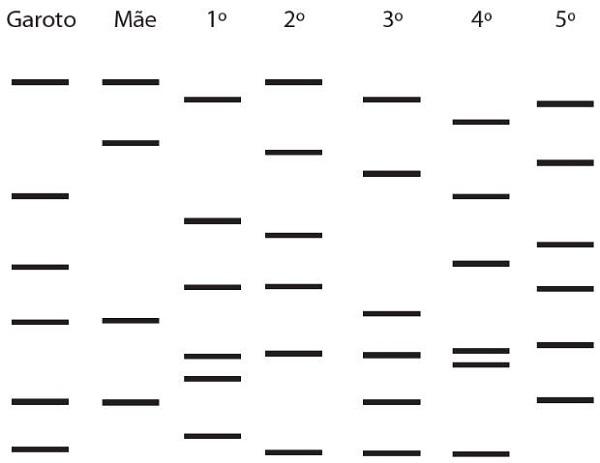 Exercício 2 - Enem - Biologia - Testes de DNA