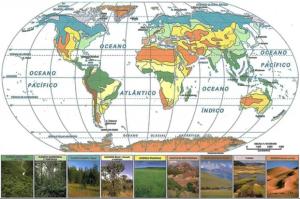 Figura 5 – Representação cartográfica da distribuição da cobertura vegetal na Terra